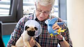 Paul O'grady For The Love Of Dogs: What Happened Next - Episode 2
