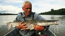 River Monsters - Killer Catfish