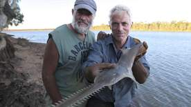 River Monsters - Chainsaw Predator