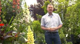 Tonight - The Trouble With Garden Centres?