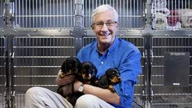 Paul O'grady: For The Love Of Dogs - Episode 1