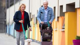 Paul O'grady: For The Love Of Dogs - Episode 3