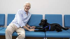 Paul O'grady: For The Love Of Dogs - Episode 7