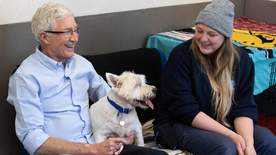 Paul O'grady: For The Love Of Dogs - Episode 8