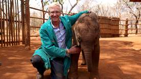 Paul O'Grady's Animal Orphans