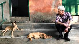 Paul O'grady For The Love Of Dogs: India - Episode 1