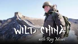 Wild China With Ray Mears - Beijing And The Great Wall