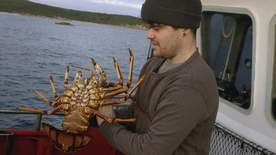 Giant Lobster Hunters - Episode 7